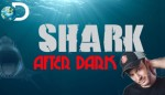 Shark After Dark sl